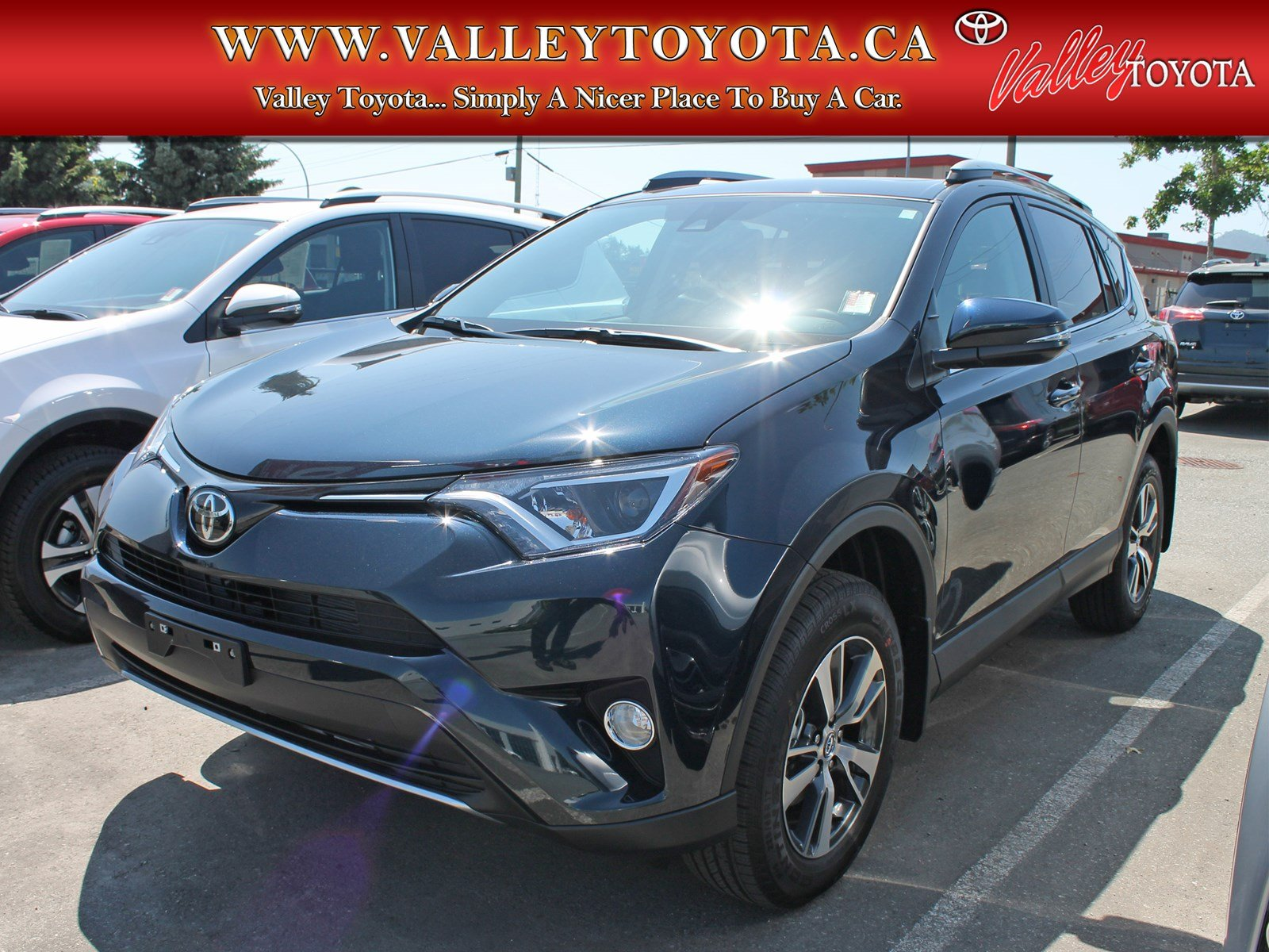 new 2017 toyota rav4 xle fwd sport utility in chilliwack vw17215 valley toyota. Black Bedroom Furniture Sets. Home Design Ideas